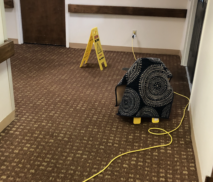 Hallway Water Loss and Clean up After