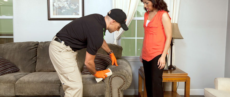 Chardon, OH carpet upholstery cleaning